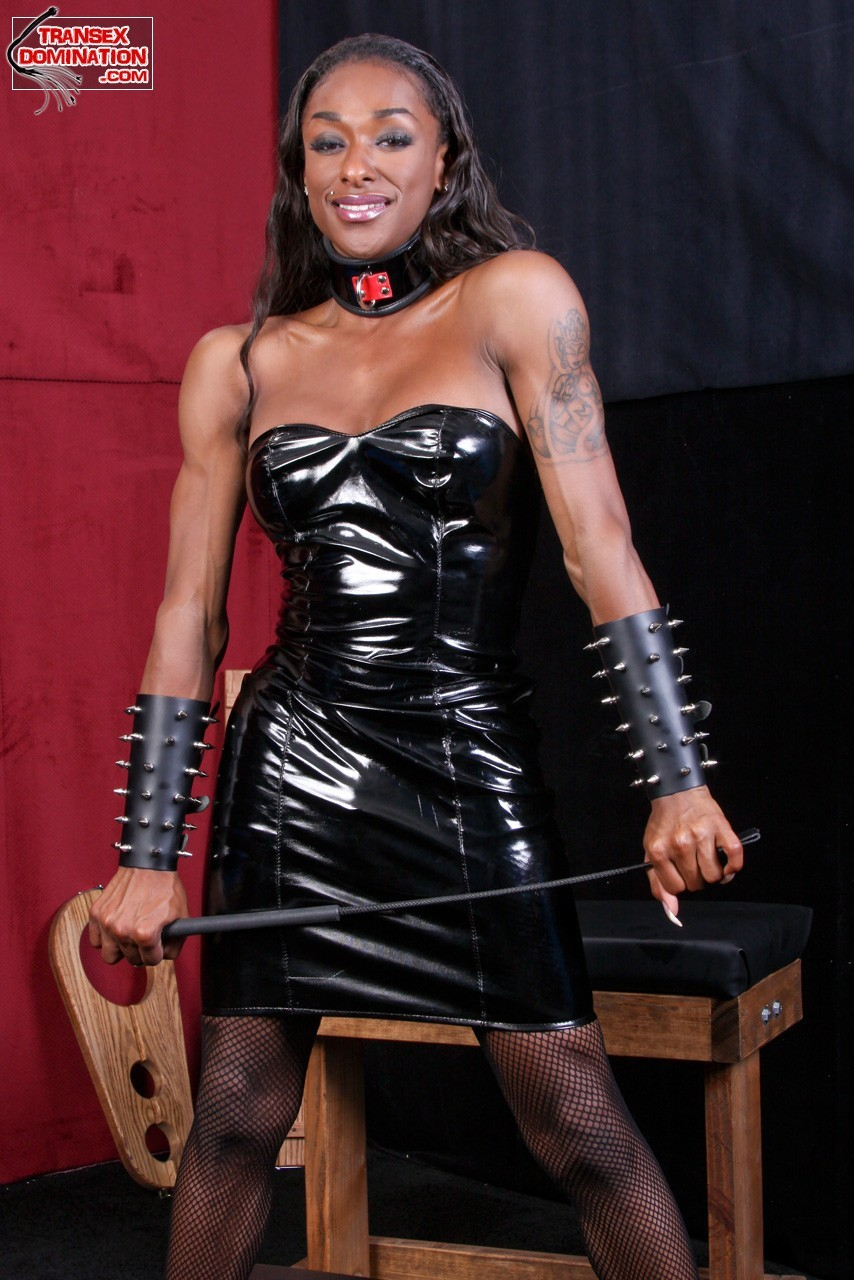 Dominant Shemales Leather Thumbs 108
